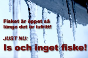 is-inget-fiske-2